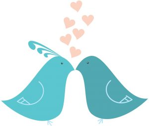 love, heart, feathers